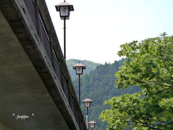 飛び込み橋