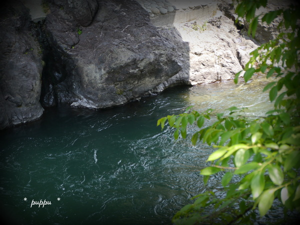 飛び込む川
