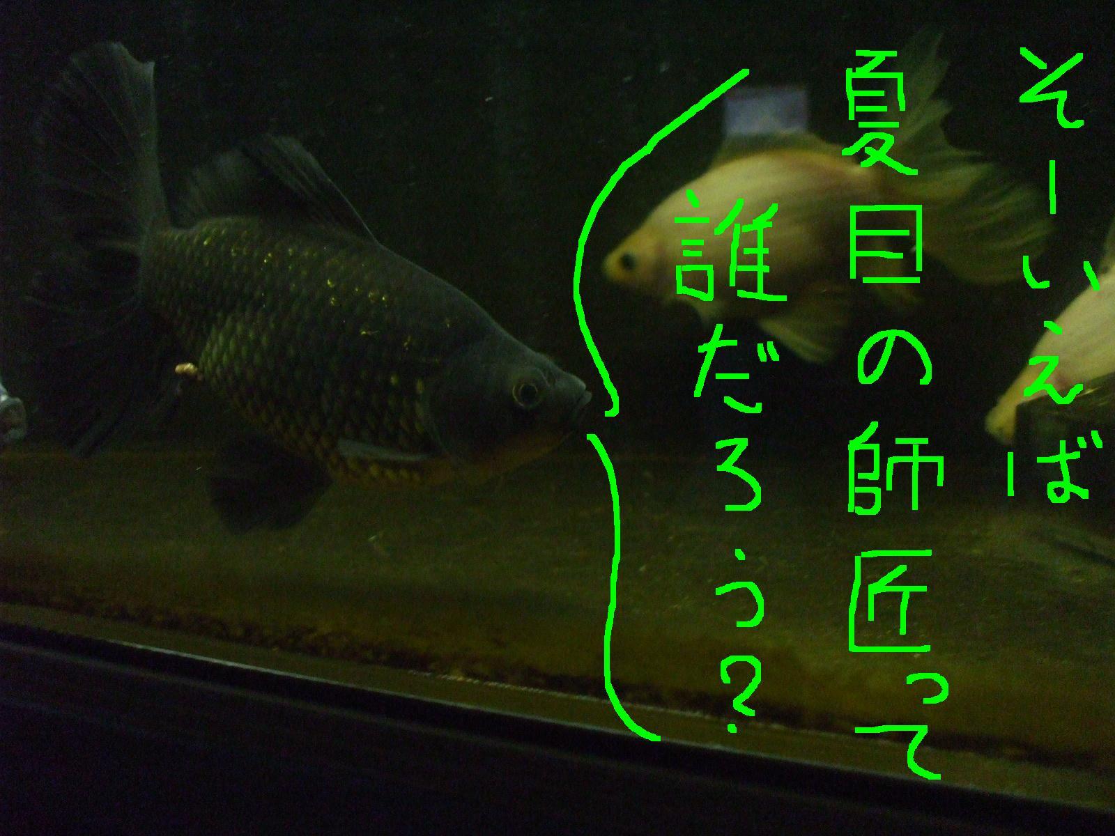 2013・9・30・7