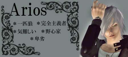arios_pro004.jpg