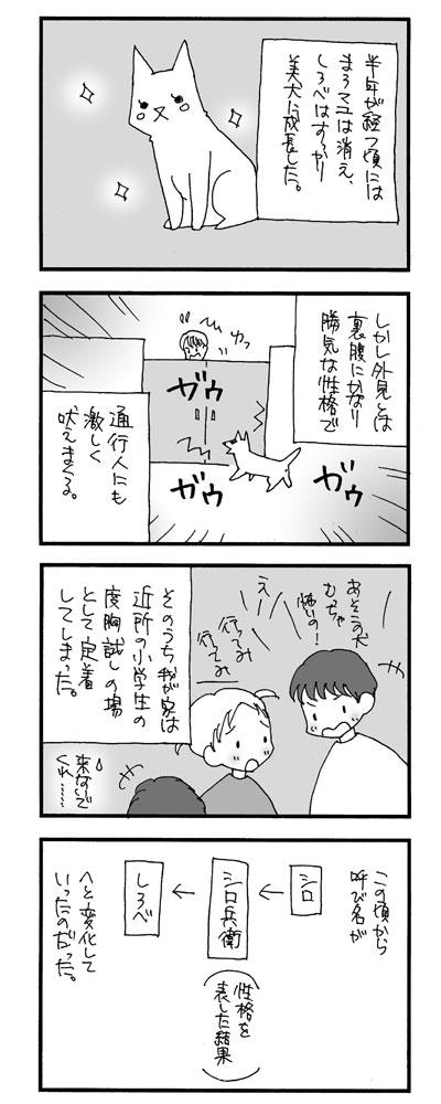 しろべのこと7