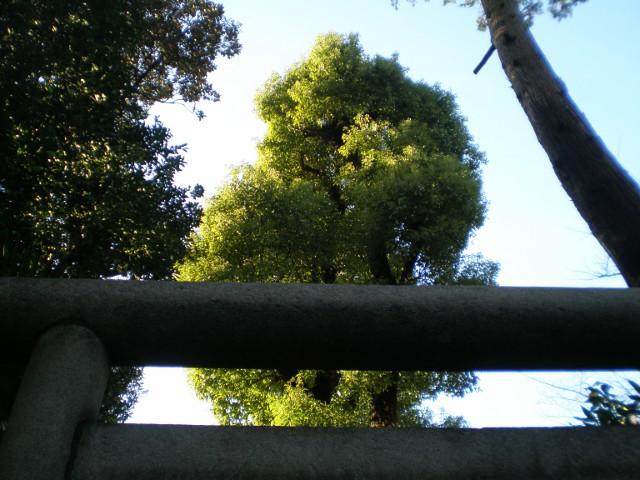 上野の稲荷神社