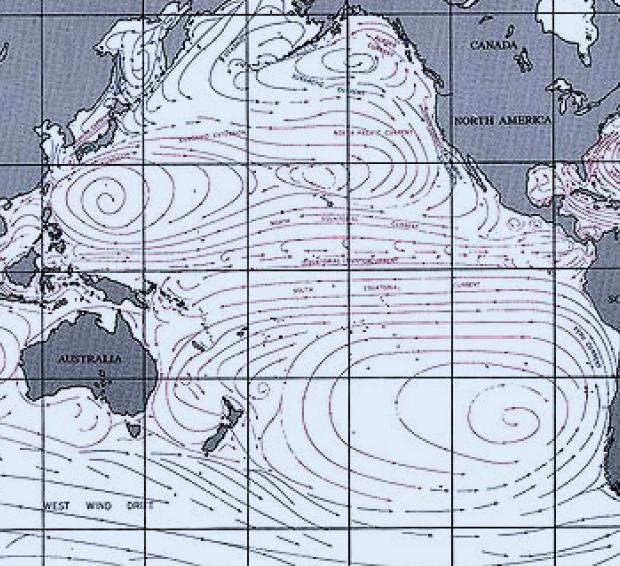 太平洋の海流図 Wikipediaより抜粋引用