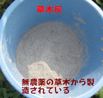灰をかける (2)
