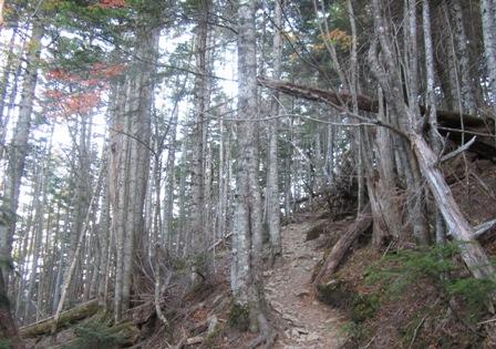 甲斐駒ヶ岳登山 (2)