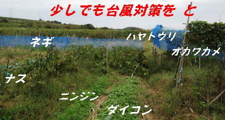 台風27号対策 (1)