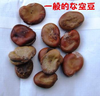 空豆3種 (4)