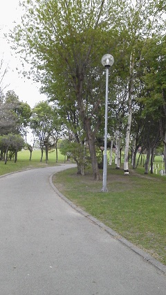 公園のなか