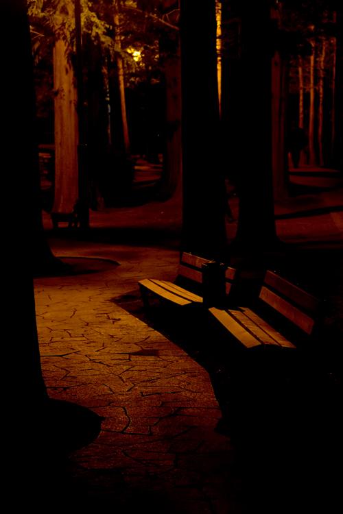 フリー画像・夕闇のベンチ