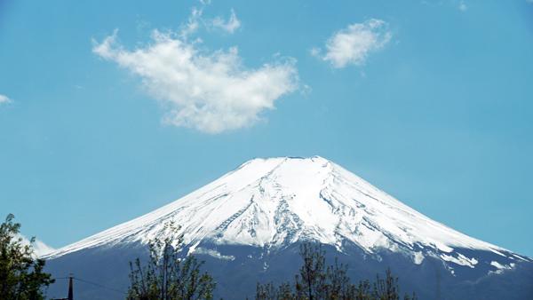 富士山が顔を出してくれました。