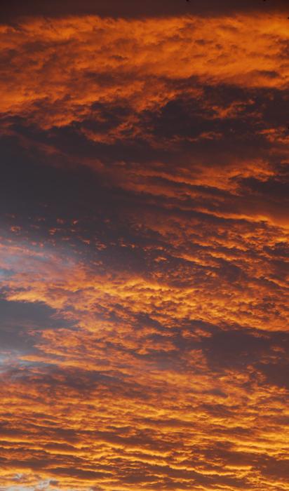 燃えそうな雲