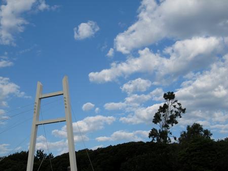はしごの正体は・・・
