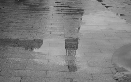 数分後には雨・・・