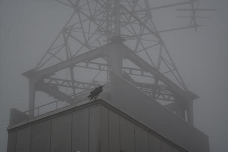 函館山のケーブル