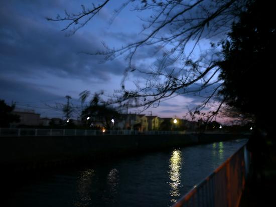 お散歩野帰り、暗くなるのがはやい。