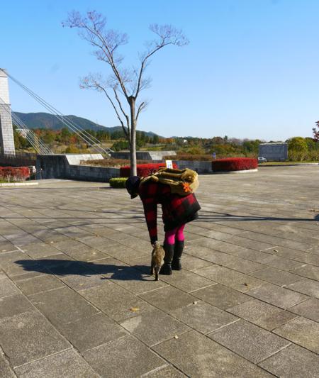 紅葉とネコ2