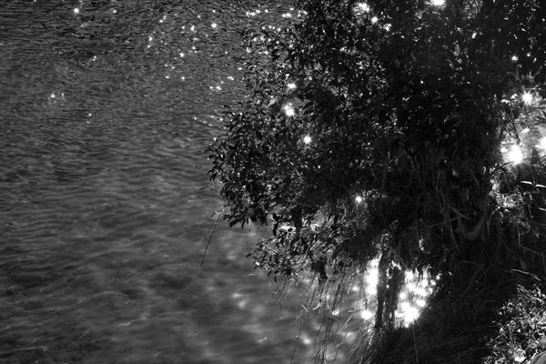 光りと影1