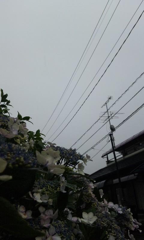 2013.6.21 13時の空①