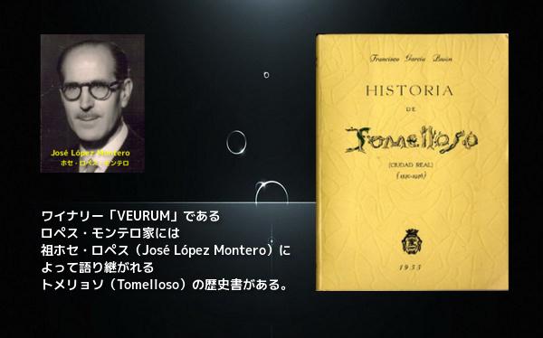 トメリョソの歴史書 W600