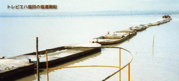 トレビエハ塩田 2 W600