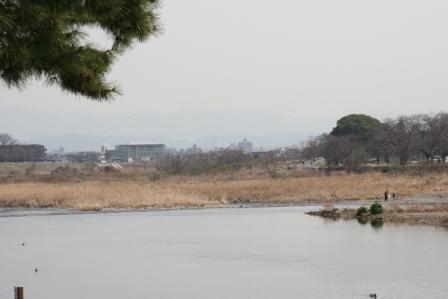 渡月橋から京都タワーは見えるのか_H25.03.16