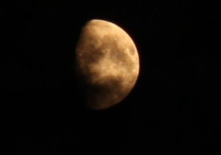 今夜の月_H25.08.16撮影