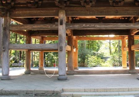 円覚寺仏殿側から_H25.09.29撮影