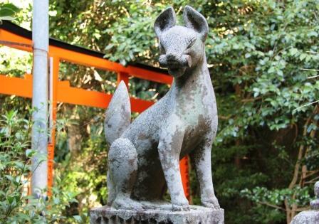 狛狐_H25.10.12撮影