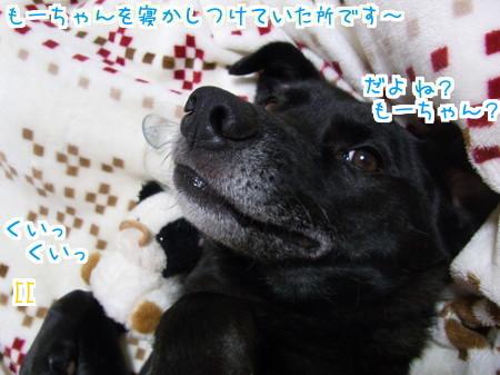 1115 添い寝 (4)