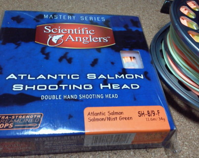 atlanticsalmon1.jpg