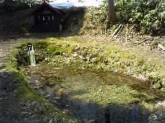 ヒプノセラピー スピリチュアルライフ 龍神の水