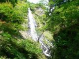 ヒプノセラピー スピリチュアルライフ 滝