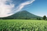 ヒプノセラピー スピリチュアルライフ 山 自然
