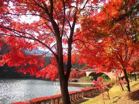 023碓氷湖の紅葉