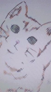泥猫 マディ・キャット・ブルーズ THE BIRTHDAY 画像