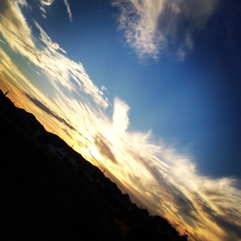 夕焼け 森 写真 画像