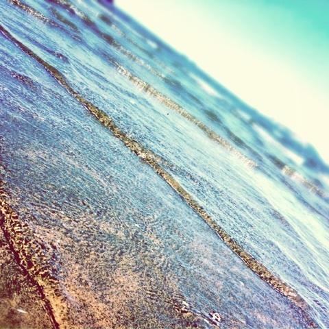 夏 海 ツイッター 画像