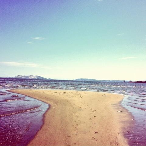 海辺 写真 画像