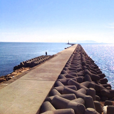 夏 海岸線 海 画像