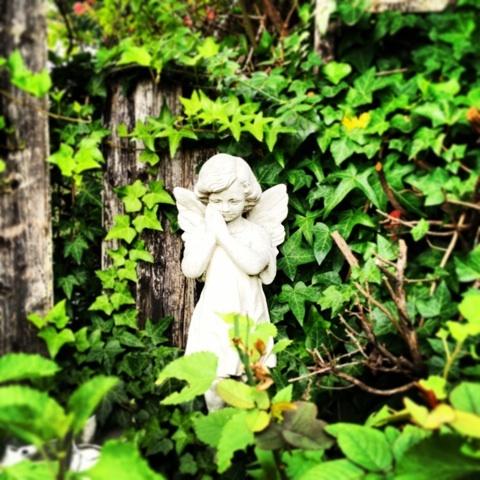 イングリッシュガーデン ガーデニング 天使 画像