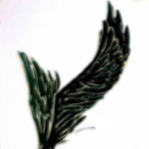 天使 悪魔 羽根 画像