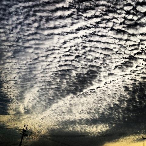 雲 秋 うろこ雲 画像