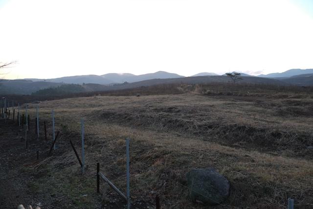 大村キャンプ0002