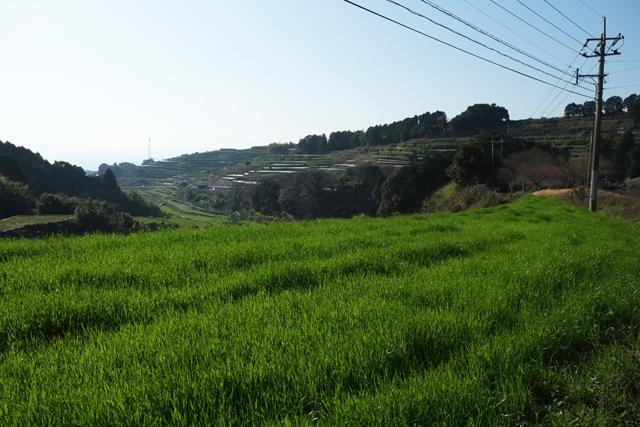 R34風景004