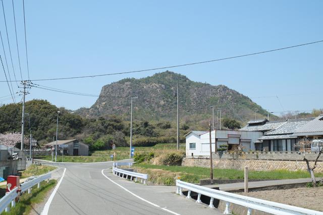 豊島018つつじ山