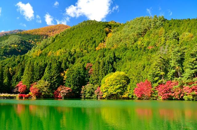 櫛形山14