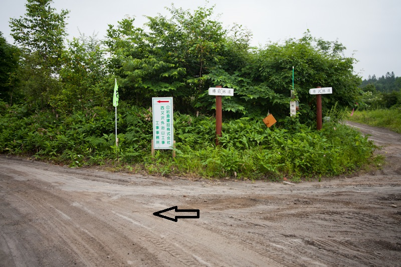 tarumae-nishikiokaroot20130803-9433.jpg