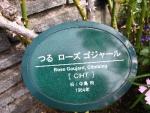 ローズガーデン2014秋 038
