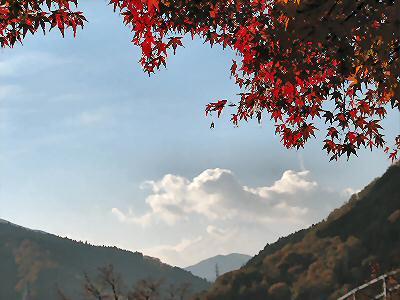丹沢湖紅葉2014 001