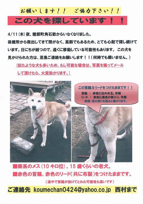 CCF20130525_00005.jpg